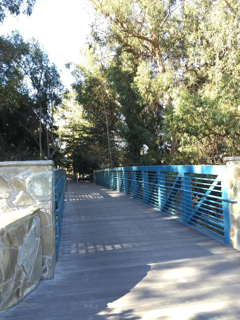 Bridge to Stevens Creek Trail